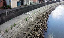 和歌山県田辺市会津川