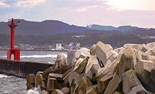 神奈川県横須賀市長井漁港