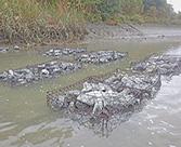 環境活性コンクリート