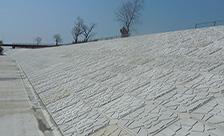 熊本県八代市球磨川